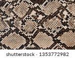 background of snake skin texture | Shutterstock . vector #1353772982