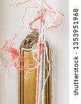 a rope of a roller shutter   a... | Shutterstock . vector #1353951968
