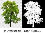 single tree on transparent... | Shutterstock . vector #1354428638