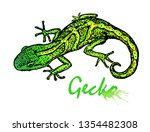 Gecko. Small Green Lizard....