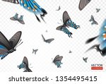 vector illustration butterflies ... | Shutterstock .eps vector #1354495415
