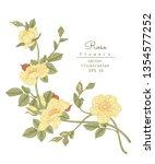 sketch floral botany collection.... | Shutterstock .eps vector #1354577252