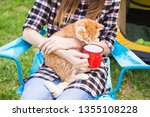 Stock photo people tourism and nature concept close up portrait of woman holding a cat 1355108228