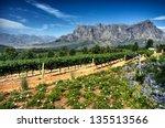 view across vineyards of the... | Shutterstock . vector #135513566