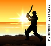 cricket batsman in playing... | Shutterstock .eps vector #135531518