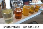 craft beer tasting at local... | Shutterstock . vector #1355358515
