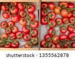 freshly picked red tomatos... | Shutterstock . vector #1355562878