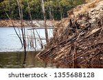 views of lake burbury  which is ... | Shutterstock . vector #1355688128