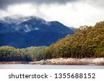 views of lake burbury  which is ... | Shutterstock . vector #1355688152