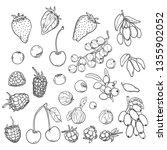 vector sketch set of berries....   Shutterstock .eps vector #1355902052