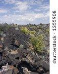 volcanic rock   valley of fires ... | Shutterstock . vector #1355908