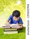 boy reading book on grass | Shutterstock . vector #135602906