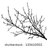 realistic tree branches... | Shutterstock .eps vector #135610502