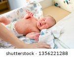 newborn baby. little child in... | Shutterstock . vector #1356221288