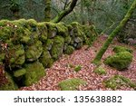 An Ancient  Moss Covered  Ston...