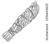 sage smudge stick hand drawn...   Shutterstock .eps vector #1356643625
