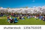 amsterdam netherlands april... | Shutterstock . vector #1356702035