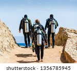 divers with equipment for... | Shutterstock . vector #1356785945