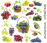 Big Collection Grapes Isolated White - Fine Art prints