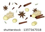 spice set with cinnamon stick ...   Shutterstock .eps vector #1357367018