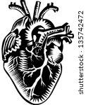 human heart | Shutterstock .eps vector #135742472