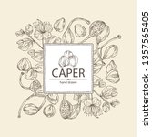 background with caper  caper... | Shutterstock .eps vector #1357565405