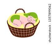 adorable newborn baby in green... | Shutterstock .eps vector #1357899062