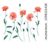 watercolor flowers of red... | Shutterstock . vector #1358121428