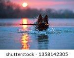Swimming Dog Against Setting...