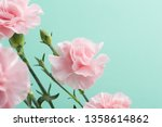 bunch of pink carnations on... | Shutterstock . vector #1358614862