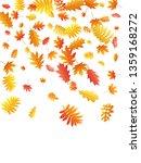 oak  maple  wild ash rowan... | Shutterstock .eps vector #1359168272
