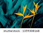 colorful flower on dark... | Shutterstock . vector #1359308168