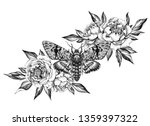 hand drawn acherontia styx...   Shutterstock . vector #1359397322