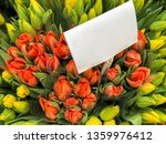 colorful tulips in a florist | Shutterstock . vector #1359976412