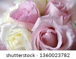 bouquet of pink and white roses | Shutterstock . vector #1360023782