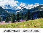 chocholowska valley in the high ... | Shutterstock . vector #1360158002