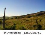 Green Pastureland Hills With...