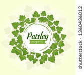 green parsley leaves in a...   Shutterstock .eps vector #1360436012