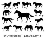 Stock vector horses silhouettes graphic vector illustration set 1360532945