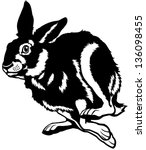 Stock vector hare black and white picture isolated on white background 136098455