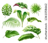tropical leaves realistic... | Shutterstock .eps vector #1361058662