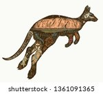 kangaroo double exposure color... | Shutterstock .eps vector #1361091365