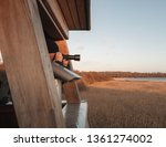 wildlife photography from a... | Shutterstock . vector #1361274002