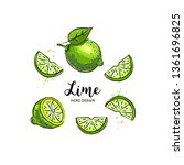 lime fruit drawing  half and... | Shutterstock .eps vector #1361696825