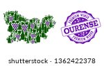 Vector collage of grape wine map of Ourense Province and purple grunge stamp for premium wines awards. Map of Ourense Province collage formed with bottles and grape berries.