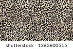 Leopard Skin Pattern. Wildlife...