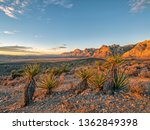 red rock canyon national... | Shutterstock . vector #1362849398