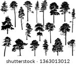 illustration with pine trees... | Shutterstock .eps vector #1363013012