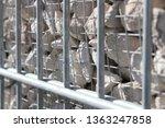 gabion wall fence  | Shutterstock . vector #1363247858