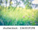 beautiful floral closeup... | Shutterstock . vector #1363319198